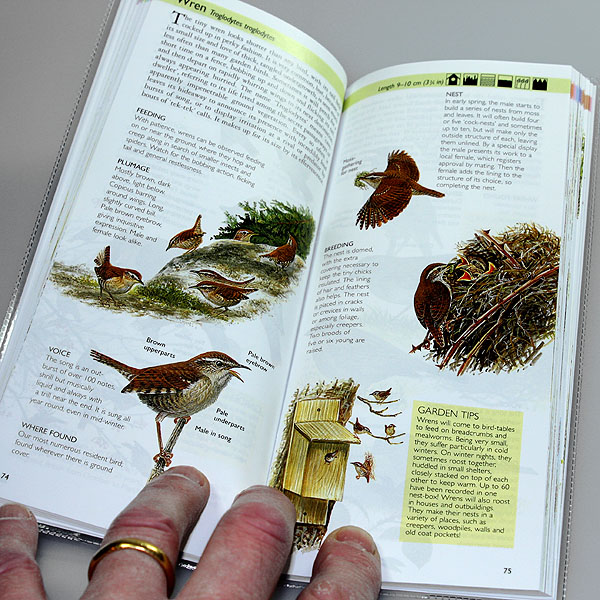 The Pocket Guide to Garden Birds by Couzens & Langman